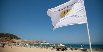La propreté des plages,  une action qui se professionnalise