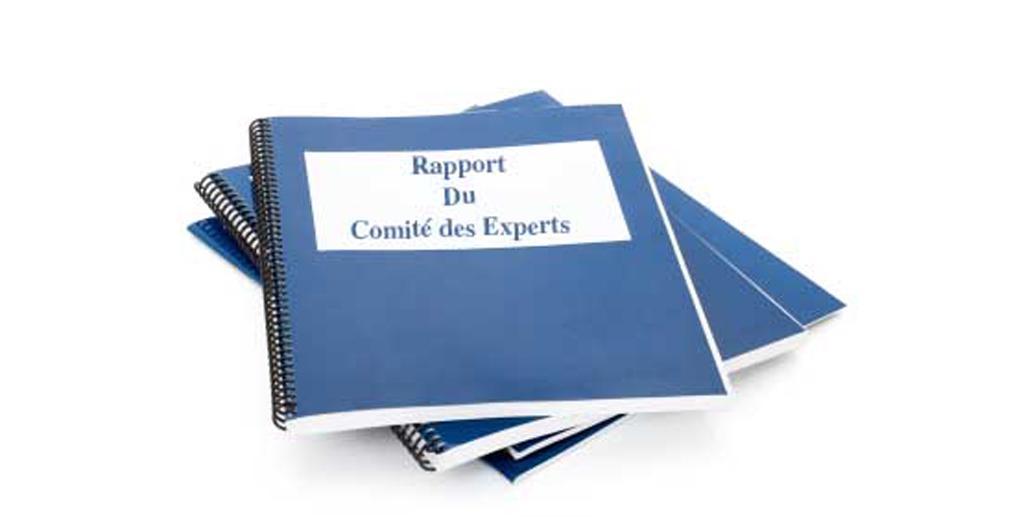 Le comité des experts  rend enfin sa copie !